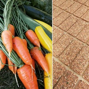 Gluten-Free Carrot Crisps