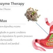 KumaMax oral enzyme therapy