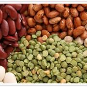 gluten free beans legumes