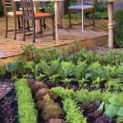 Edible Landscaping Afke Zonderland