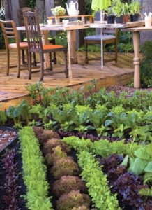 Edible Landscaping by Afke Zonderland
