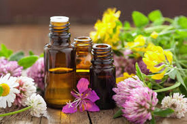 Essential Oils Okanagan Rawsome