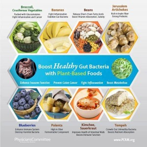 Boost your healthy gut bacteria
