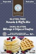 gluten free pancake-mix