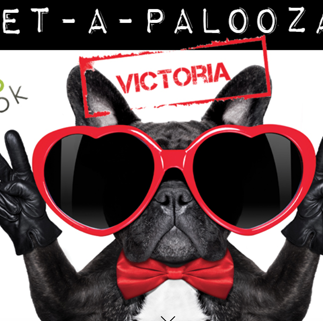 Pet-a-Palooza Taco Revolution WP