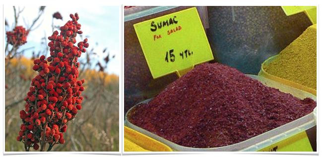 gluten-free sumac recipe 2