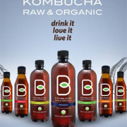 b-tea-kombucha-chef-pola-inc-357-x-323