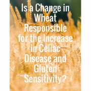 busting-myths-about-genetically-modified-wheat