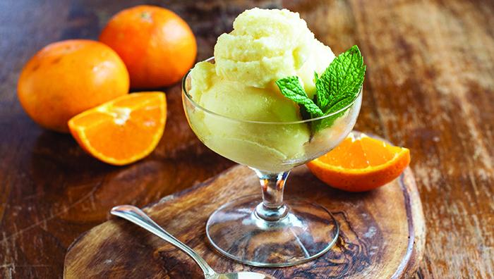 gluten free frozen yogurt 1