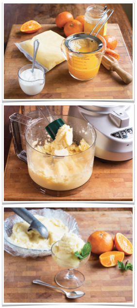 gluten free frozen yogurt 7