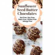 dairy free sunbutter chocolate nutritiously well WP