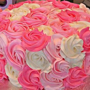 happyditty! pink swirl ig