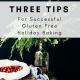 Selena De Vries 3 Tips WP