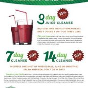 rawthentic cleanse program