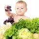 early diet celiac disease wp