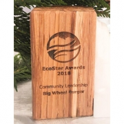 Big Wheel Burger Community Eco Award wp