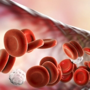 celiac disease immune cells